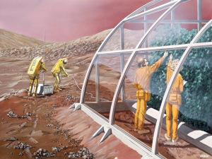 Les astronautes chinois pourraient cultiver des légumes sur la Lune Mars-serre