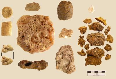 Les pierres découvertes dans la cache pré-colombienne au Panama.