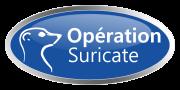 opération suricate
