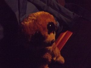 mascotte suricate du cercle 71 crédit photo: cercle surictate71 et investigations ufoetscience